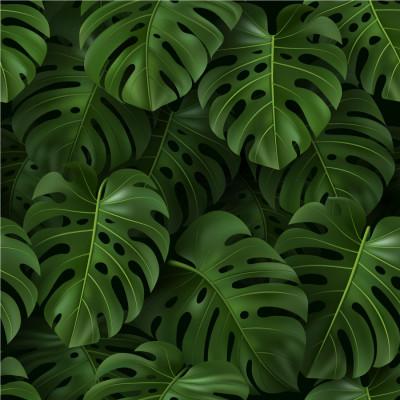 Papel de Parede Folhas 3D de Costela de Adão