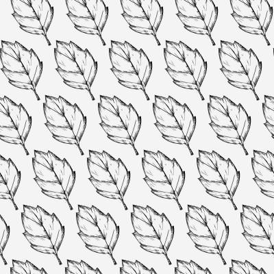 Papel de Parede Desenho Folhas de Árvore