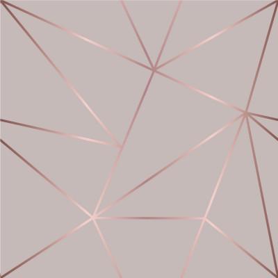 Papel de Parede Linhas Geométricas Rosê