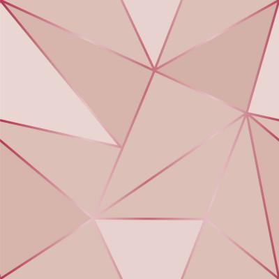 Papel de Parede Geométrico Rose Silver Tons de Rosa