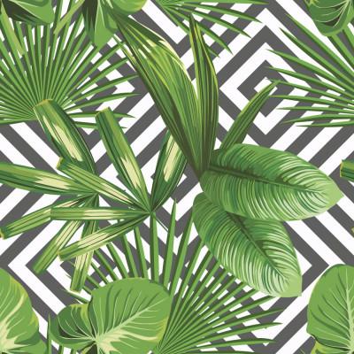 Papel de Parede Folhagem Tropical Fundo Geométrico